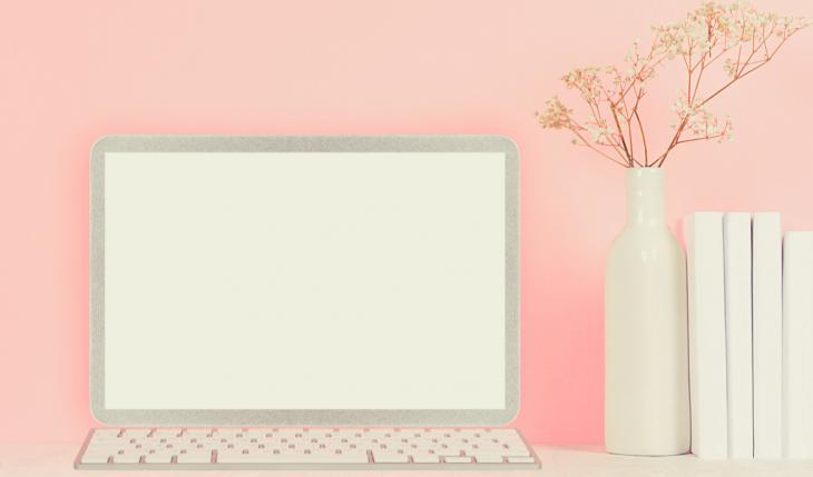 pink blogger